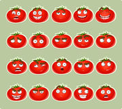 Cute cartoon tomato smile with many expressions ic Stock Photos