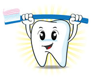 Cute cartoon tooth and toothbrush Stock Photos
