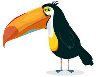 Cute Cartoon Toucan Royalty Free Stock Photo