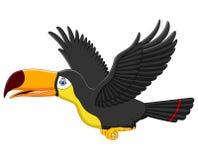 Cute cartoon toucan bird flying Royalty Free Stock Photos