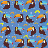 Cute Cartoon toucan birds set on blue background Stock Image