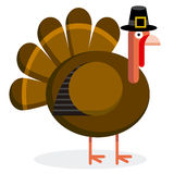 Cute Cartoon Turkey With Pilgrim Hat Stock Image