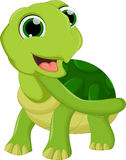 Cute cartoon turtle. Illustration of Cute cartoon turtle Royalty Free Stock Photos