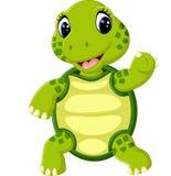 Cute cartoon turtle. Illustration of Cute cartoon turtle Stock Photos