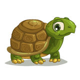 Cute cartoon turtle Royalty Free Stock Photography