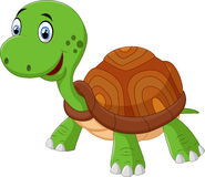 Cute cartoon turtle, isolated  on white Royalty Free Stock Photo