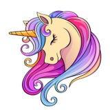Cute cartoon unicorn head with rainbow mane
