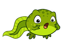 Cute cartoon vector baby tadpole looking surprised. OMG, wow fac Royalty Free Stock Image
