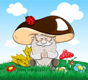 Cute cartoon vector fairytale oldman-mushroom Royalty Free Stock Photos