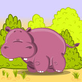 Cute cartoon vector Hippo. Vector illustration of the cartoon hippopotamus with green shrubs Royalty Free Stock Photography