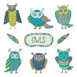 Cute cartoon vector owls  with  feathers Royalty Free Stock Photo