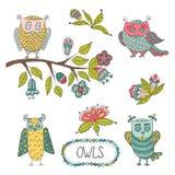 Cute cartoon vector owls, flowers, brunche Stock Photo