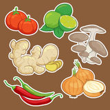 Cute cartoon Vegetable set. Cute vector cartoon Vegetable set Stock Image