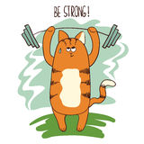 Cute cartoon weightlifter cat lifting the barbell. Stock Photography