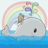 Cute cartoon whale and a bird. On a rainbow background Stock Photography