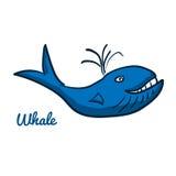 Cute cartoon whale. Ocean animal vector illustration. Sea creature in a funny, hand drawn style vector illustration