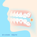 Cute cartoon wisdom teeth. With health concept Royalty Free Stock Photo
