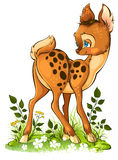 Cute cartoon young deer Stock Photos