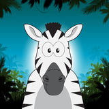 Cute cartoon zebra in front of jungle background Stock Photos