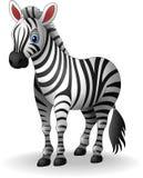 Cute Cartoon zebra on white background