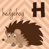 Cute cartoon zoo illustrated alphabet with funny animals: H for Hedgehog. English alphabet. Learn to read. Vector illustration Stock Illustration