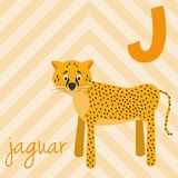 Cute cartoon zoo illustrated alphabet with funny animals: J for Jaguar. English alphabet. Learn to read. Vector illustration Royalty Free Illustration