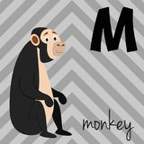 Cute cartoon zoo illustrated alphabet with funny animals: M for Monkey. English alphabet. Learn to read.  Vector illustration Royalty Free Stock Photos