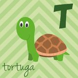 Cute cartoon zoo illustrated alphabet with funny animals. Spanish alphabet: T for Tortuga. Learn to read. Isolated Vector illustration Royalty Free Stock Photos
