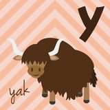 Cute cartoon zoo illustrated alphabet with funny animals. Spanish alphabet: Y for Yak. Learn to read. Isolated Vector illustration Stock Photos