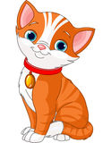 Cute cat. Illustration of Cute cat wearing a red collar with gold tag