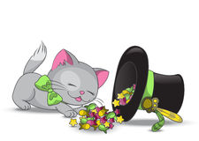Cute cat. Eating candies from magic hat Royalty Free Stock Photos