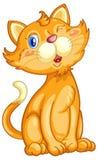 Cute cat Royalty Free Stock Photos