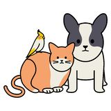 Cute Cat And Dog With Bird Mascots Adorables Characters Stock Images