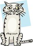 Cute Cat Cartoon. Cute striped cat with bulging eye cartoon Royalty Free Stock Photo