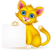 Cute cat cartoon with blank sign Stock Photos