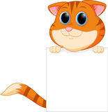 Cute cat cartoon with blank sign Stock Images