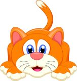 Cute cat cartoon character Royalty Free Stock Photo