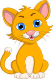 Cute cat cartoon expression Stock Image