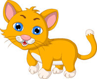 Cute cat cartoon expression Stock Image