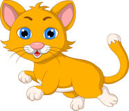 Cute cat cartoon expression Stock Photography