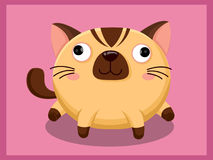 Cute Cat Cartoon. Funny cartoon and vector animal characters Stock Photography
