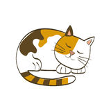 Cute cat cartoon Stock Photography