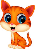 Cute cat cartoon Stock Images