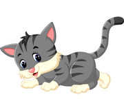 Cute cat cartoon Stock Photo