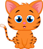 Cute cat cartoon Royalty Free Stock Photo
