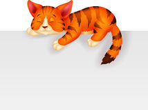 Cute cat cartoon sleeping Stock Photos