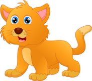 Cute cat cartoon. Vector illustration of cute cat cartoon Stock Photo