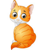 Cute cat cartoon  on white background Royalty Free Stock Photography