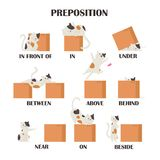 Cute cat character in different poses with box. Prepositions of place English. Studying of foreign language concept