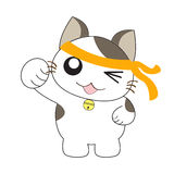 Cute cat character Royalty Free Stock Photo
